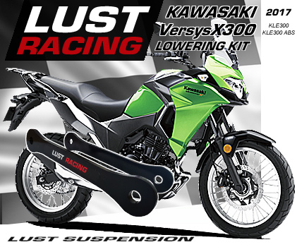 Kawasaki Versys 1000 lowering kit